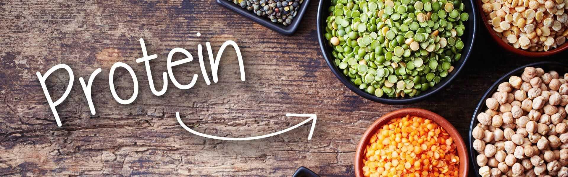 protéines végétales - alimentation saine