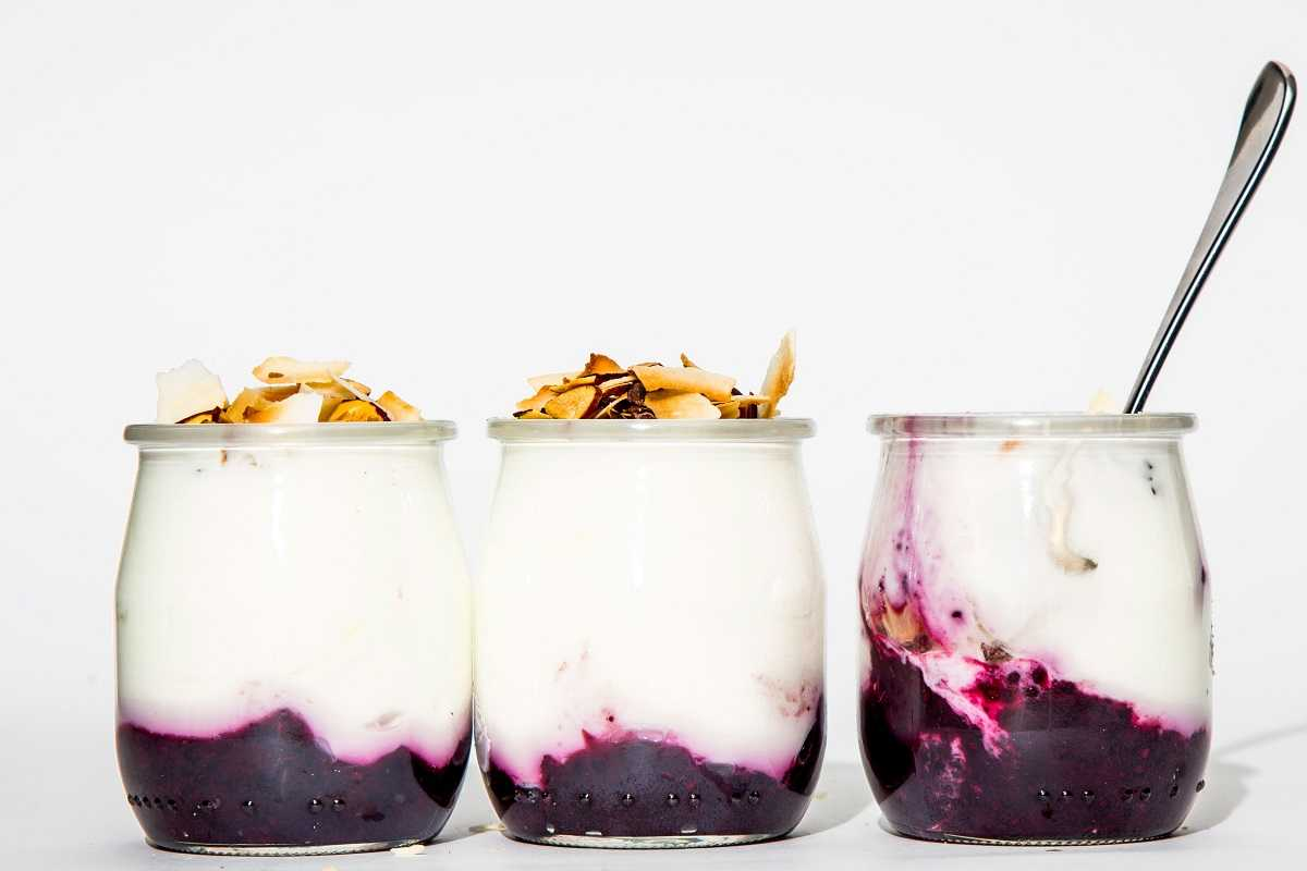 yaourt vegetal fruits